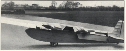Baynes_Bee_1937_Swivel_Wing_Image.PNG