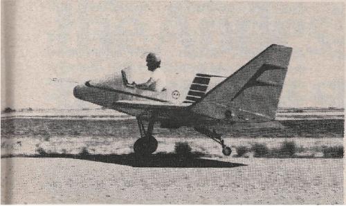 Australian Hornet-160 Ultralight Flying Wing Airplane