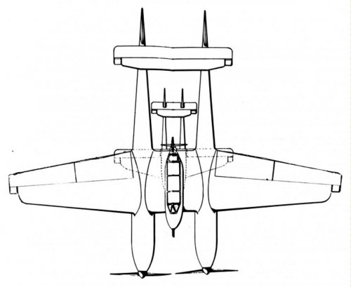 Twin engine Archer with lightning plan view.jpg