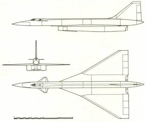 Projection of the T-4 plane Design (No. 46 in the diagram on page 21). (Nikolai Gordjukov).jpg