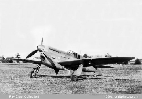 D.513 after modification.jpg