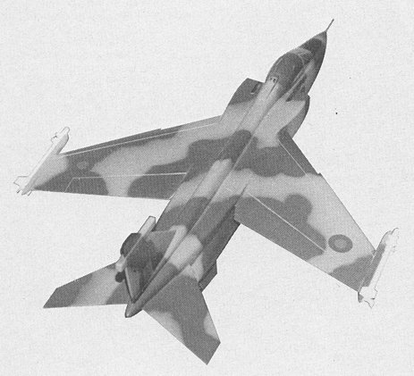 SEPECAT_Jaguar_big_ wing.jpg