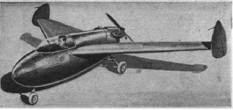 Tailless pusher aircraft.JPG