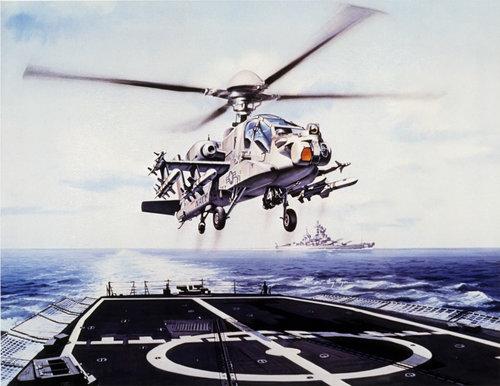 NavyAH-64big.jpg