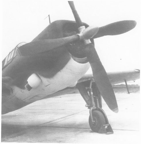 Curtiss XSB2C-6 1945.jpg