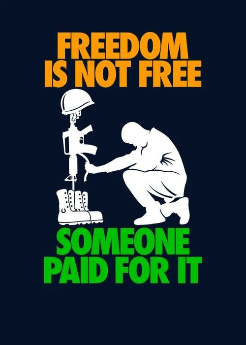 Cartoon freedom is not free Nov 11.jpg