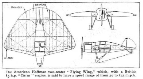hoffman 2 seater flying wing.jpg