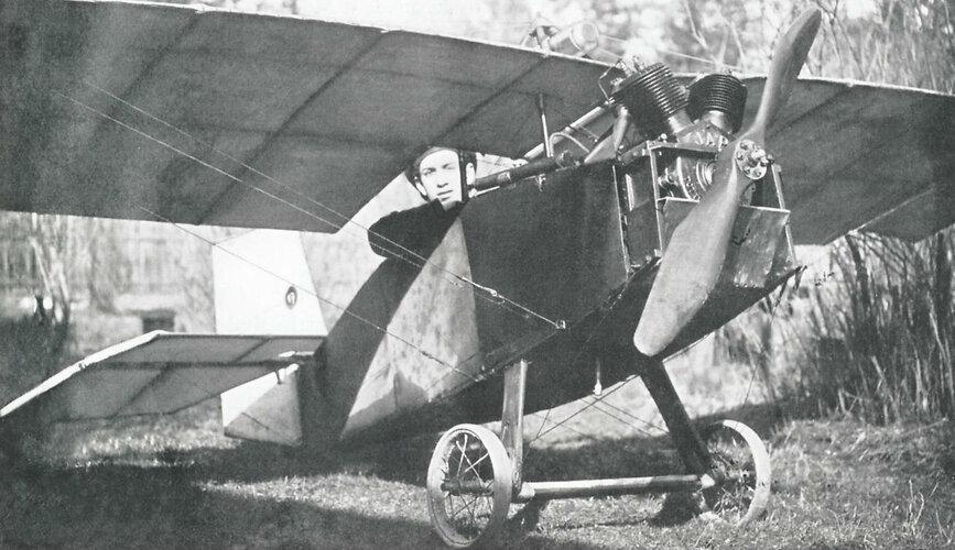 1.IgA-1-Bloha-v-variante-parasol..jpg