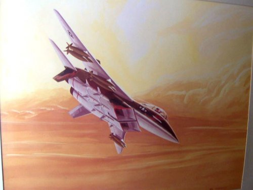 eBay - McCormack - NAR F-15 - Air-To-Ground Mission 1.JPG