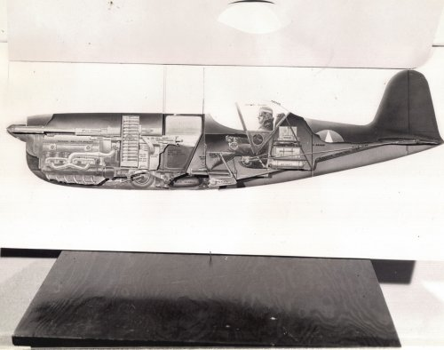 Bell XP-77 cut-a-way.jpg