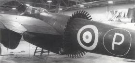 MB Mosquito frill.jpg