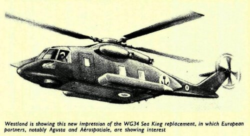 WG34_Marina_Flight_1979.JPEG